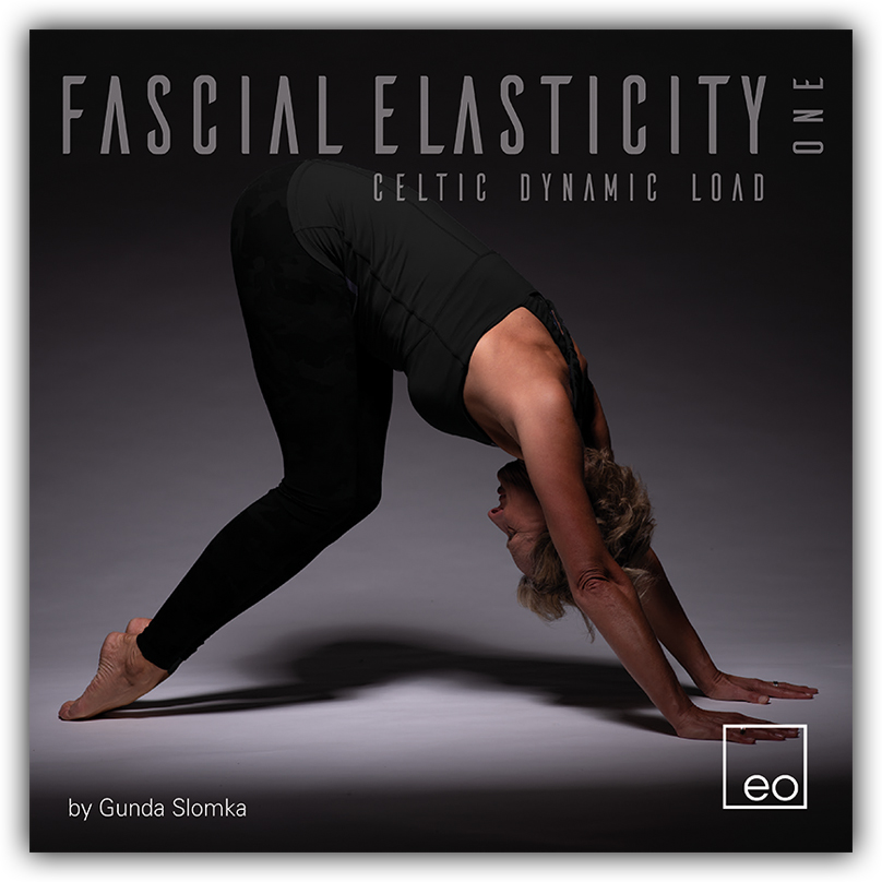 Inlay-Booklet4s-FascialElasticity.indd